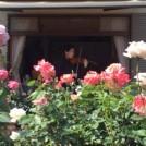 バラ香る庭宅でヴァイオリンの音色に癒される in 国立