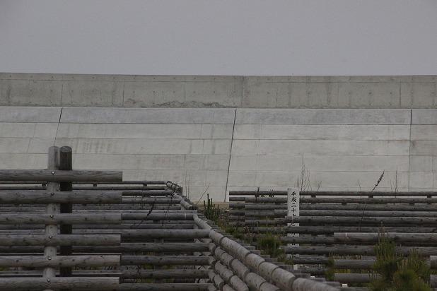 16高い防波堤で海は見えないけれど安心ですね (2)