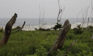 20160525海岸