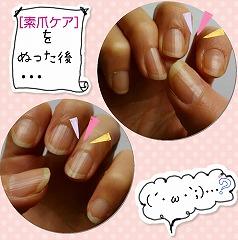 素爪ケアを塗った後の爪