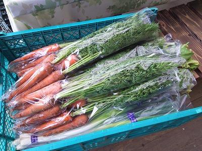 芝桜見物だけじゃもったいない!産直販売や収穫体験もできる!千葉市富田都市農業交流センター
