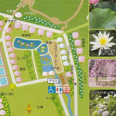 s-map03