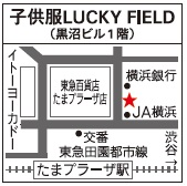 den_luc_map