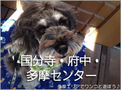 店内ワンコ同伴OKの店(国分寺・府中・多摩センター)