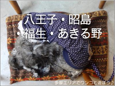 店内ワンコ同伴OKの店(八王子・昭島・福生・あきる野)