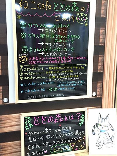 yumemachi06