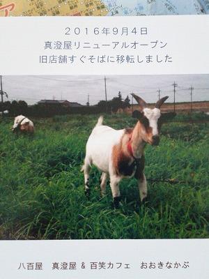流山平和台の八百屋さん『真澄屋』リニューアルオープン