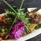 WILD RICEで無農薬野菜の安心山盛り野菜ランチ