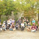 11月13日は愛犬と一緒に走ろう!「西神戸犬マラソン」開催!
