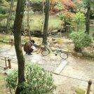 """秋風を感じながらサイクリング!覚王山で""""恋の三社めぐり""""しませんか?"""