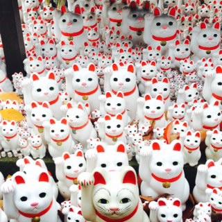 【世田谷】豪徳寺は紅葉の名所&招き猫発祥の地!