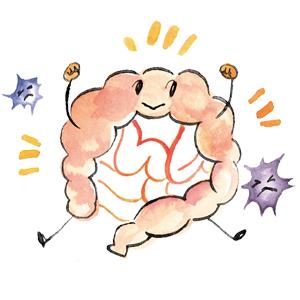 腸のスペシャリストが教える「食べて免疫力アップ」