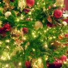 161201_docchi_Christmas