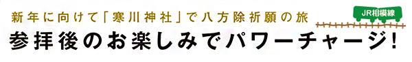 新年に向けて「寒川神社」で八方除祈願の旅 参拝後のお楽しみでパワーチャージ! JR相模線