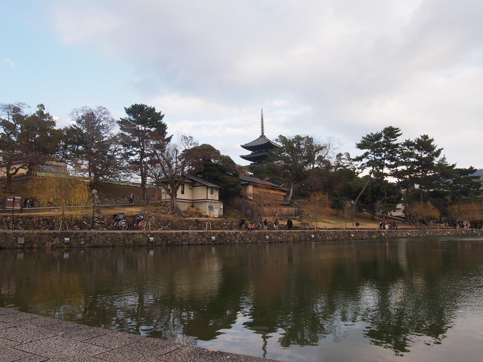 奈良に行ったらオススメ!興福寺敷地内でお抹茶を~