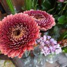 優しい色合いの花束やブーケに心ほっこり、与野駅前の「温花庭」