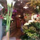 素敵な街角のお花屋さん「moora moora」@柏