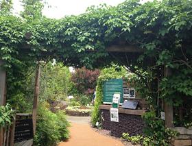日野「With Garden(ウィズガーデン)」
