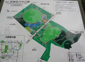 都立 武蔵国分寺公園