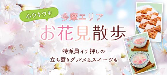 2017年お花見はここ!