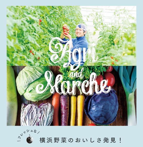 横浜野菜のおいしさ発見!