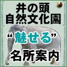 """【特集】井の頭自然文化園 """"魅せる""""名所案内"""