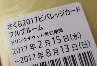 1703_stbsakura3