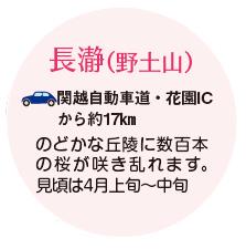 長瀞(野土山)