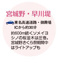 宮城野・早川堤