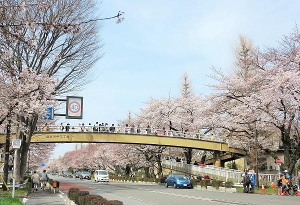 歩道橋-600-1
