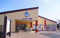 chi0302sakura07