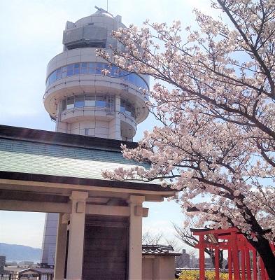 人丸山公園6