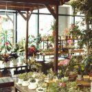 ニーズセンター花の家