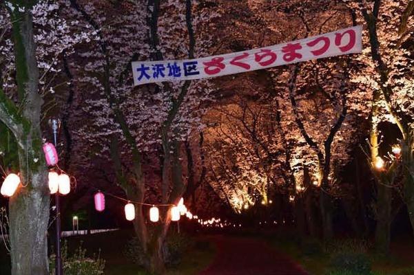 mac_oosawasakuramaturiyozakura