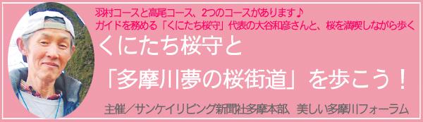 桜ウォークイベント2017
