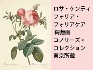 ルドゥーテの「バラ図譜」