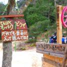 木のぼりや火おこしも!「てんぱくプレーパーク」は自由な遊び場