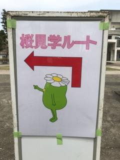 mac_sagajo5
