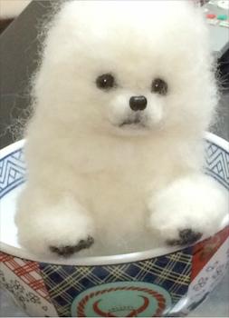中山 みどり監修 羊毛フェルトで愛犬・愛猫を作ろう(5回)