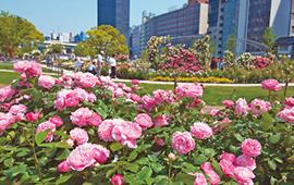 osk_170406_flowergarden03