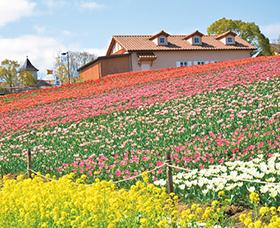 osk_170406_flowergarden16