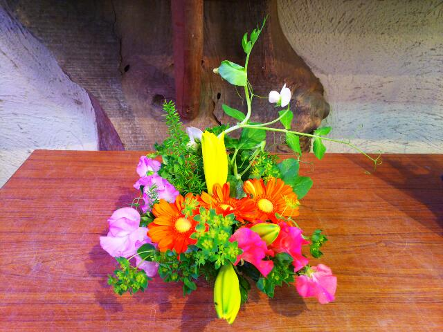 GWは名物オーナーのいる盆栽町「石井まさるのお花やさん」へ。セリ市もあるよ♪