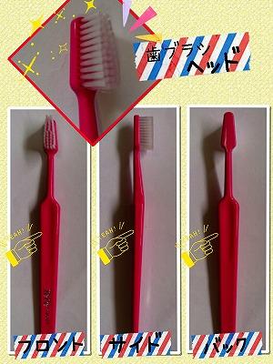 歯ブラシの特徴