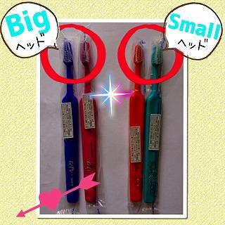 歯ブラシのヘッドサイズ2種