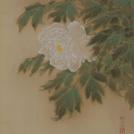 4/15(土)~6/11(日)青梅市立美術館で「鳥を描く~写実と象徴~」展