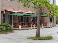 我孫子市手賀沼親水広場水の館内農家レストラン米舞亭