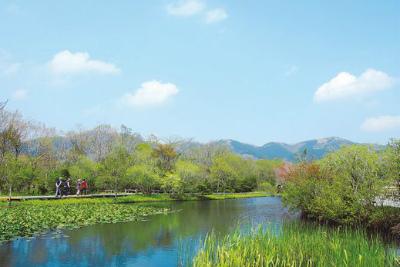 湿地生園3