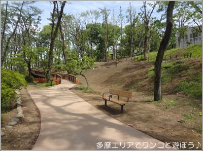 八王子 富士森公園