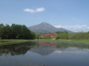 """会津磐梯山麓の""""生き方""""に出会う旅 ブルーベリー、アスパラガスやハーブの収穫体験で魅力発見"""