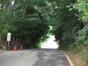1706_syoub-road2